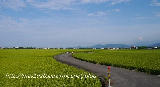 2014-06-02_冬山-三奇_P1040524.JPG