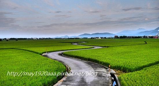 2014-06-02_冬山-三奇_P1040551.JPG