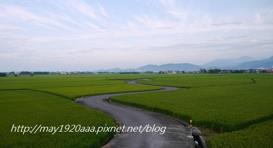 2014-06-02_冬山-三奇_P1040552.JPG