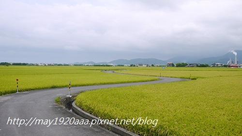 2014-06-22_冬山-三奇_P1040639.JPG