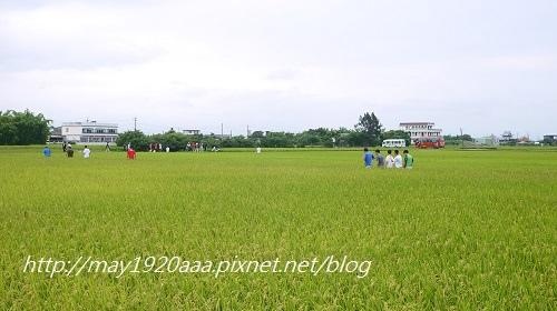 2014-06-22_冬山-三奇_P1040643.JPG