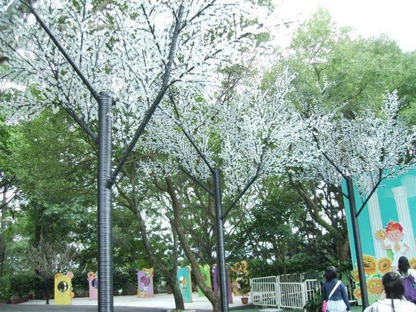 劍湖山ㄉ樹樹.JPG