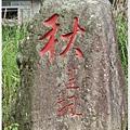 竹子湖海竽-2.jpg
