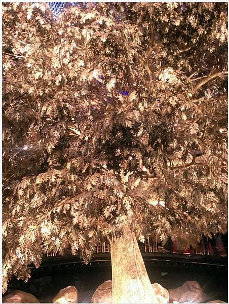 2014-10-11-永利發財樹-3
