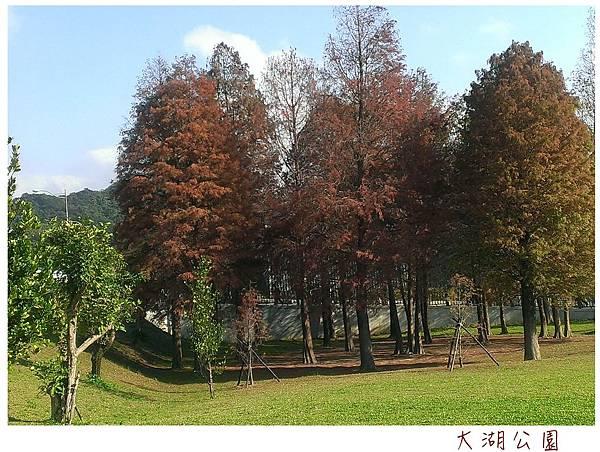 大湖公園-1