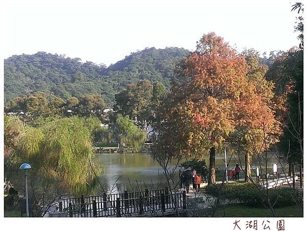 大湖公園-4