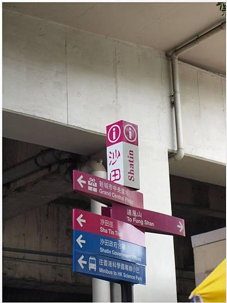 香港沙田-01