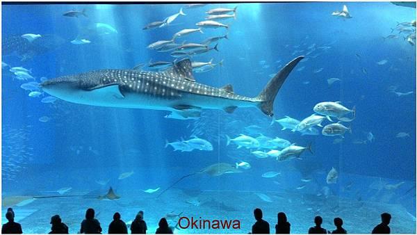 日本沖繩-1.jpg