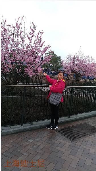 上海迪士尼-12.jpg