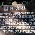 日本東北-06.jpg