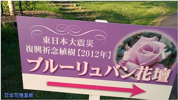 日本花捲溫泉04.jpg