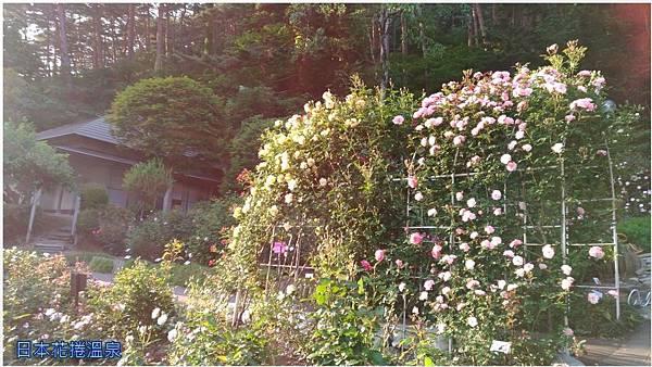 日本花捲溫泉11.jpg