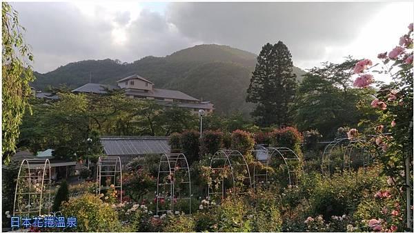 日本花捲溫泉10.jpg