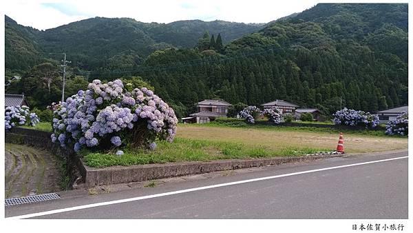 日本佐賀見返瀑布-06.jpg