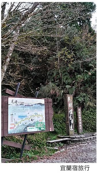 宜蘭棲蘭馬告森林-3.jpg
