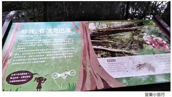 宜蘭棲蘭馬告森林-36.jpg