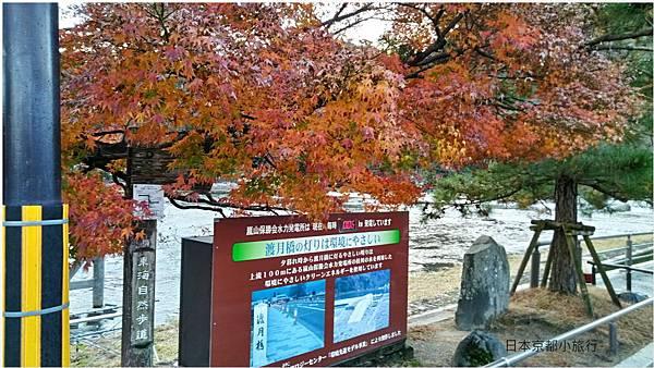 京都旅行-3.jpg