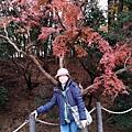 日本京阪-04.jpg