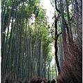 日本-嵐山-6.jpg