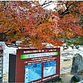 日本-嵐山-1.jpg