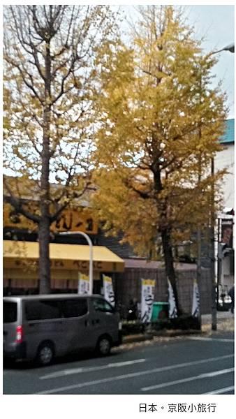 日本京都-街景-1.jpg