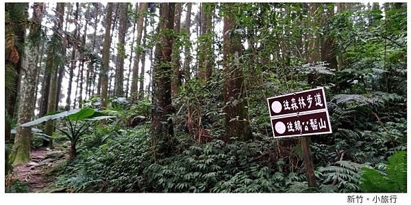 新竹小旅行-20.jpg