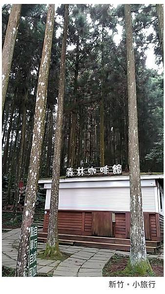 新竹小旅行-31.jpg