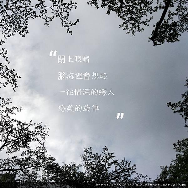 IMG_PITU_20171204_142000.jpg