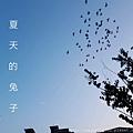 IMG_PITU_20180103_231511.jpg