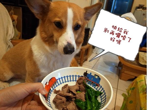 羊生日吃肉.JPG