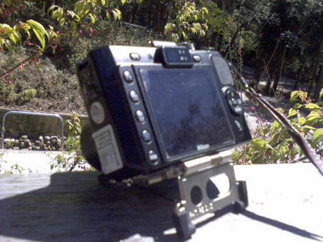 DSC00060.JPG