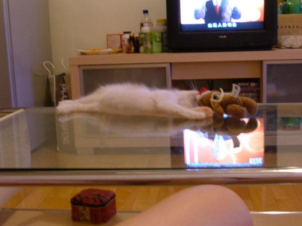 伸直身體抓著熊熊睡