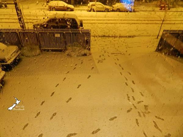 玩雪的腳印