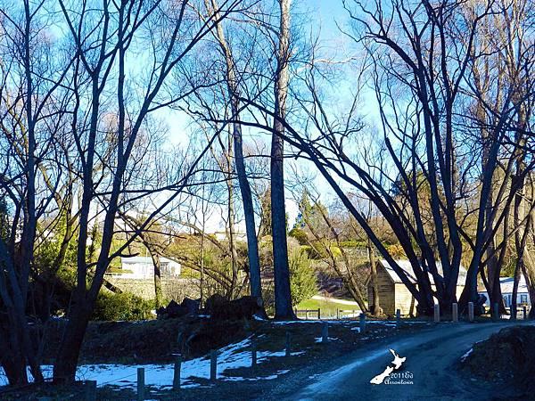 Arrowtown健行路線華人根據地和箭河