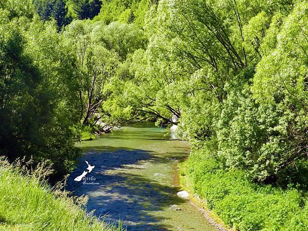 箭河邊健行路線第五條(春)