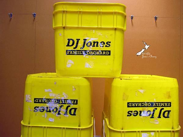 Jones櫻桃工