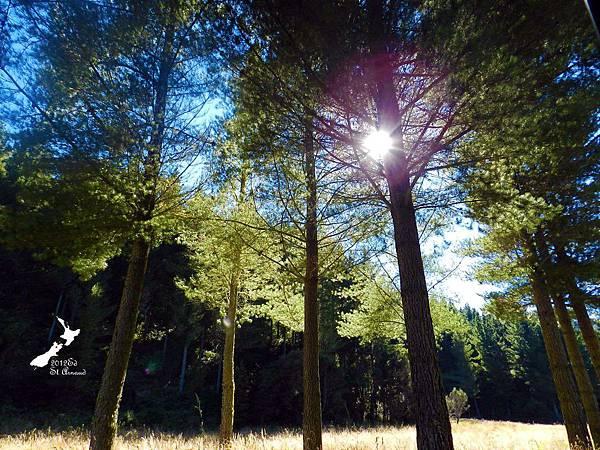 2/8Lake Nelson National Park