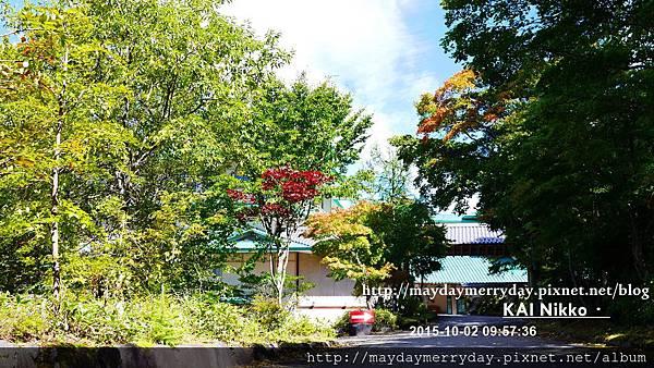 20151002-095736-161.JPG