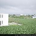 20110416-160736-090.JPG