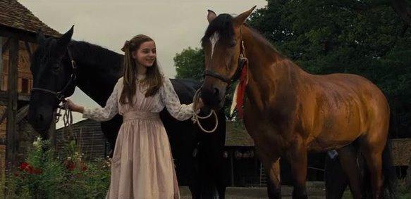 War Horse3