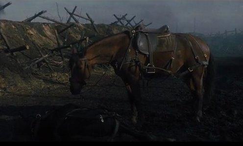 War Horse4