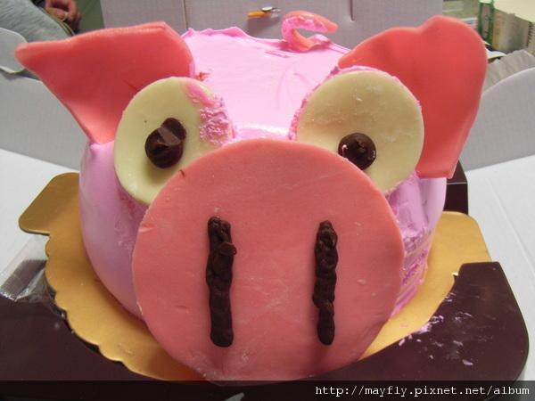 大豬生日,三毛送的蛋糕