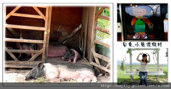 豬豬和熊熊