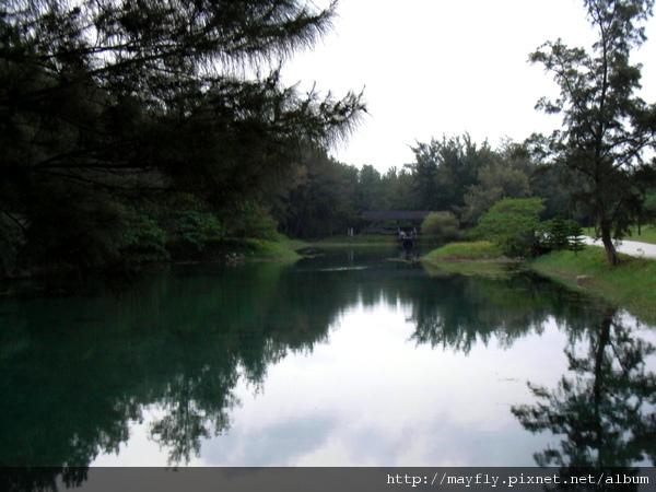 超美的琵琶湖