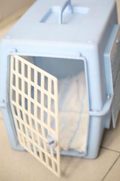 不受歡迎的貓籠-1.jpg