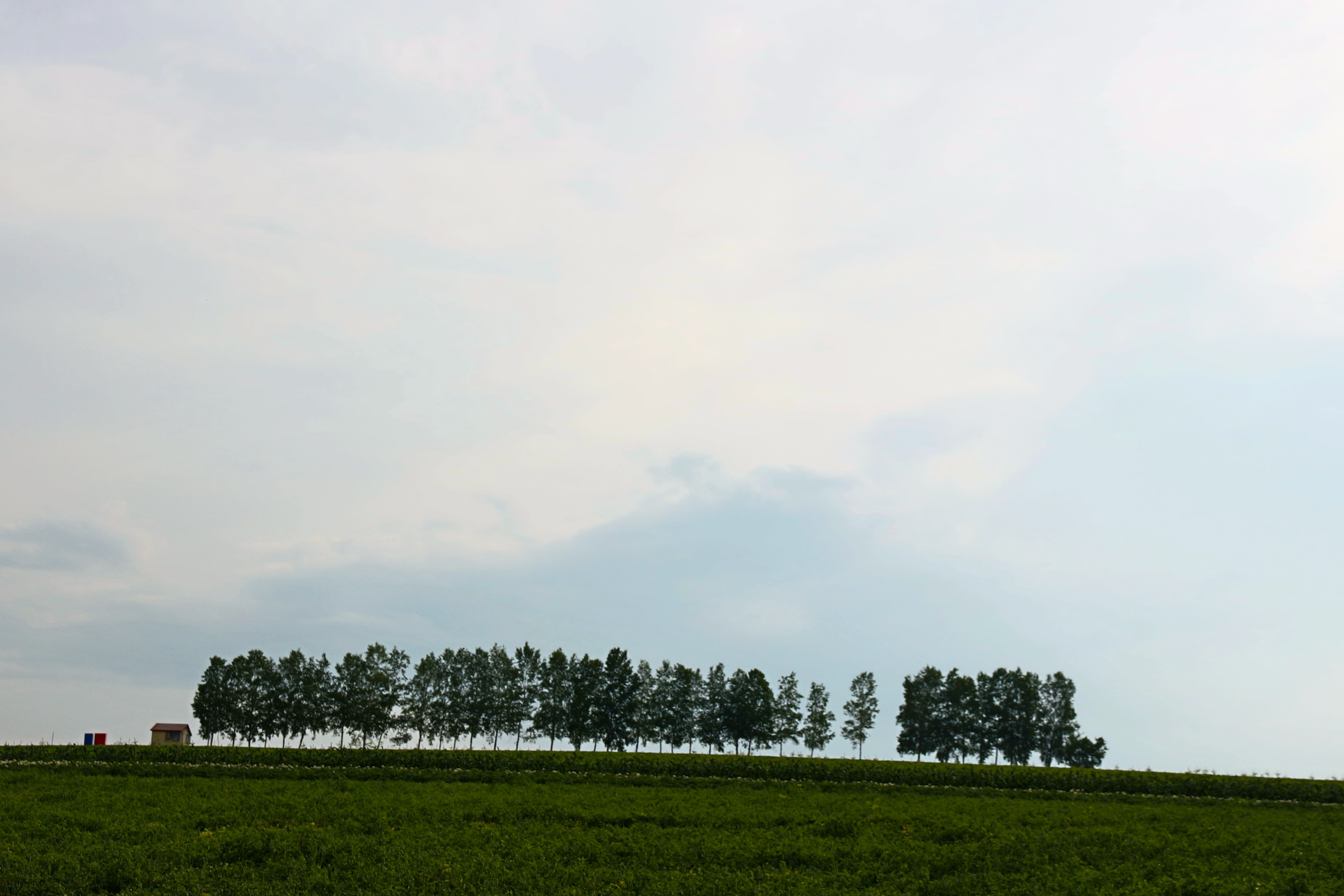 IMG_0419 2