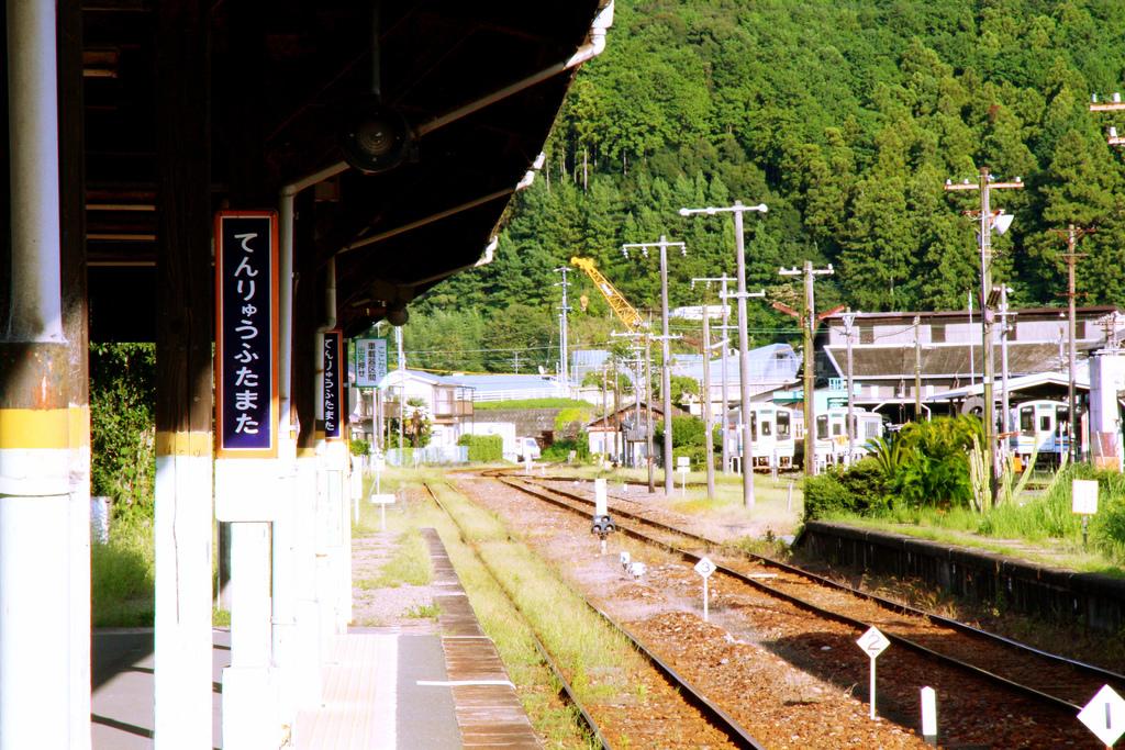 IMG_4700_Fotor.jpg