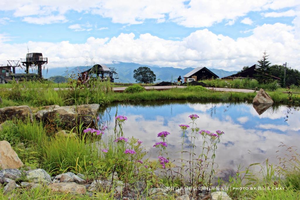 batch_高山植物と北尾根の池.JPG