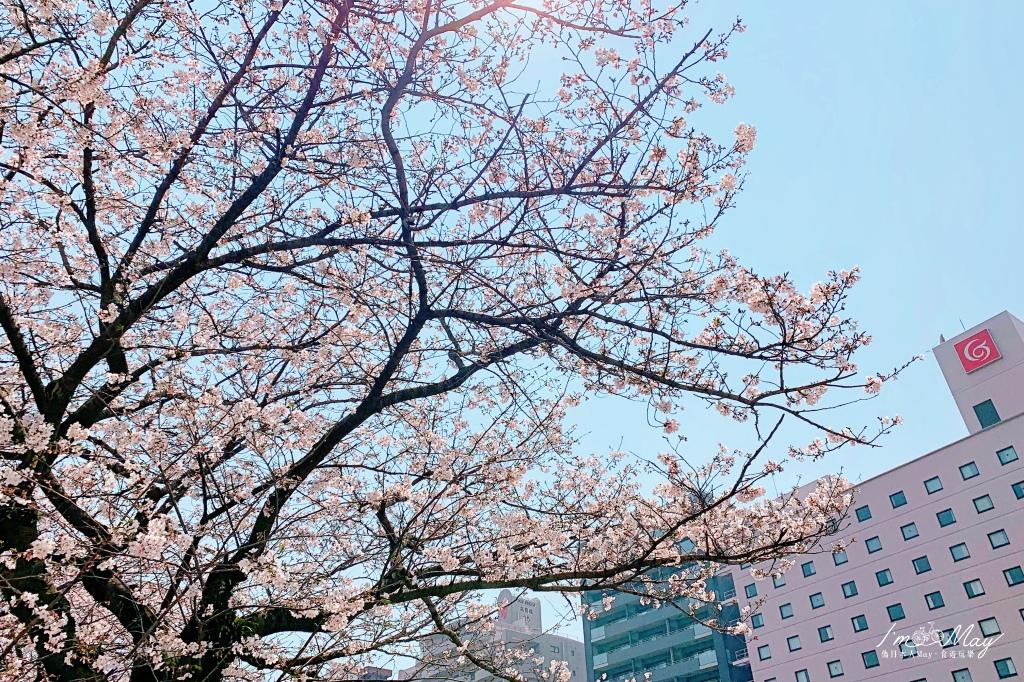 batch_桜とホテル.jpg