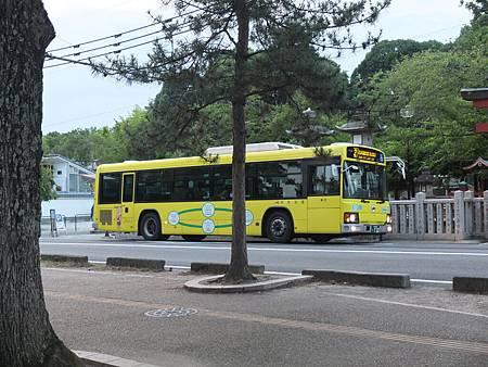 7DSCF2305